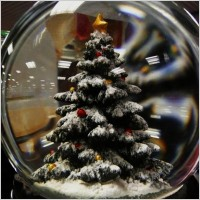 home-for-holidays-tree