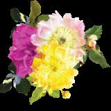 flowerbunch-1-e1507839611400
